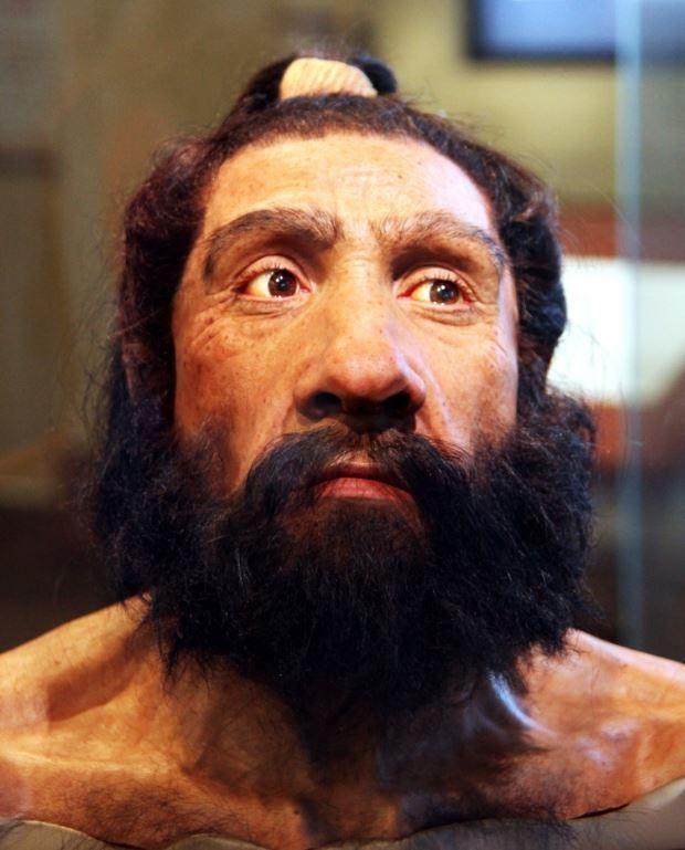 미국 워싱턴DC 스미소니언 박물관에 전시된 네안데르탈인 남성 머리 모형 (사진 fLICKR))